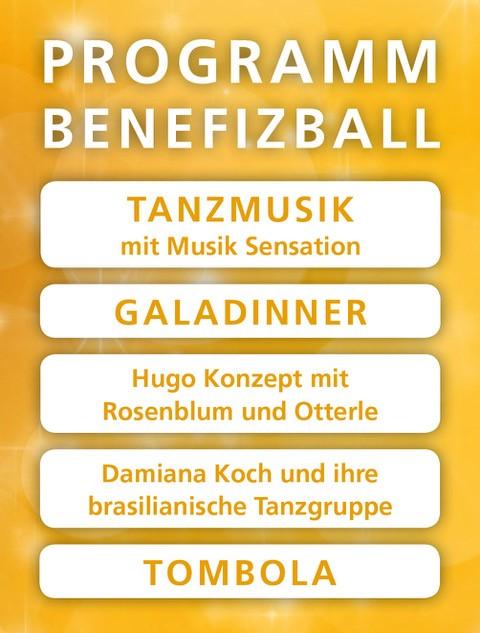 Benefizball Programm